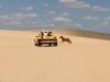 Dune di Galinhos